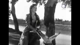 Arab women riding donkey