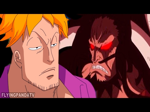 MARCO & KAIDO'S Dark Past: A Former BEAST Pirate!! (One Piece)