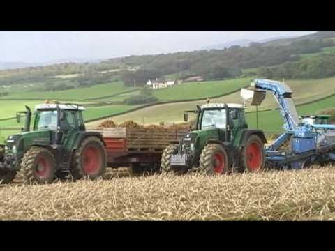 Potato Harvest 2010, Inch Island Co. Donegal