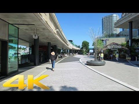Walking around Futakotamagawa east side, Tokyo - Long Take【東京・二子玉川】 4K