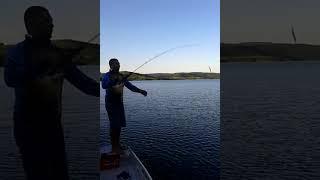 Marcelao Рибак Moriáh Fishing - Amarelinhos трави білий II