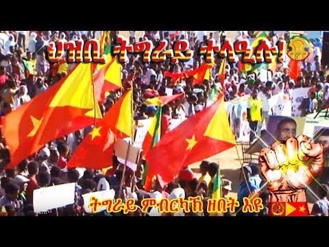Tigrai Online Ethiopian breaking daily news serving Diaspora
