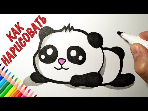 Как нарисовать панду видео
