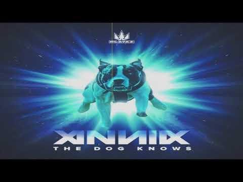 Annix & Turno - Cold Killer (Original Mix)