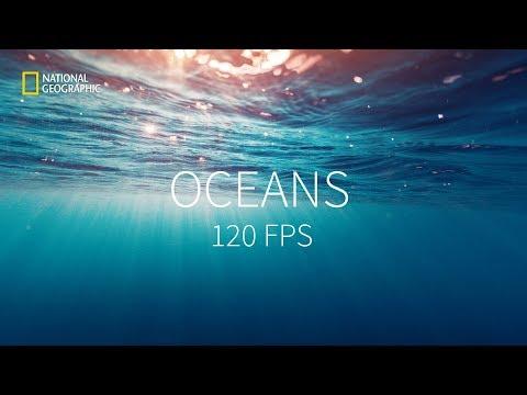 Враждебная планета / Hostile Planet -1 сезон 2 серия (2019) Full HD 120 FPS