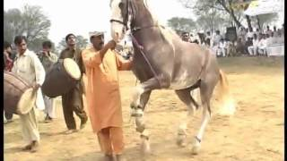 Sher-Dil dancing at Dadyal horse dance mela