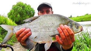 Пахра,, Рибалка на Фідер Лящ приплив на корм