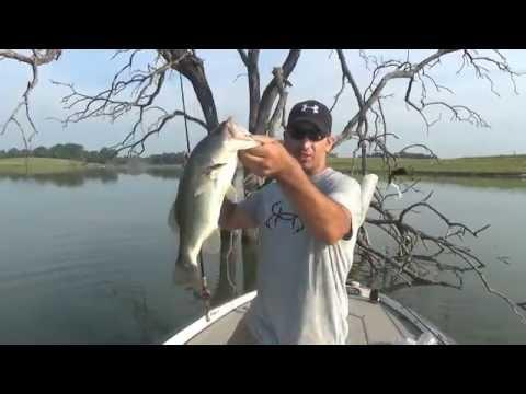 Using Soft Plastic Lizards For Largemouth Fishing