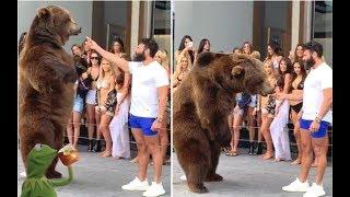 Dan Bilzerian Wild Video Of Him Feeding A Giant Bear With Animal Trainer + Da Baby's Security Respon