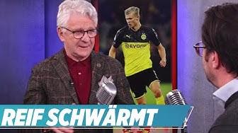 🔴 Der Haaland-Hype! I Reif ist live I Favres Trainerstuhl, Flick und die Bayern, Nagelsmann