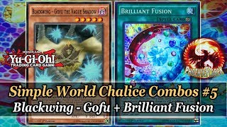 Yu-Gi-Oh! World Chalice Combos 5: Gofu + Briliant Fusion = Drawing 2 Cards & +4 Card Advantage