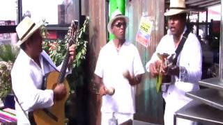 Caoba Trio - Mi linda Guajira