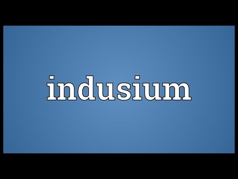 Header of indusium