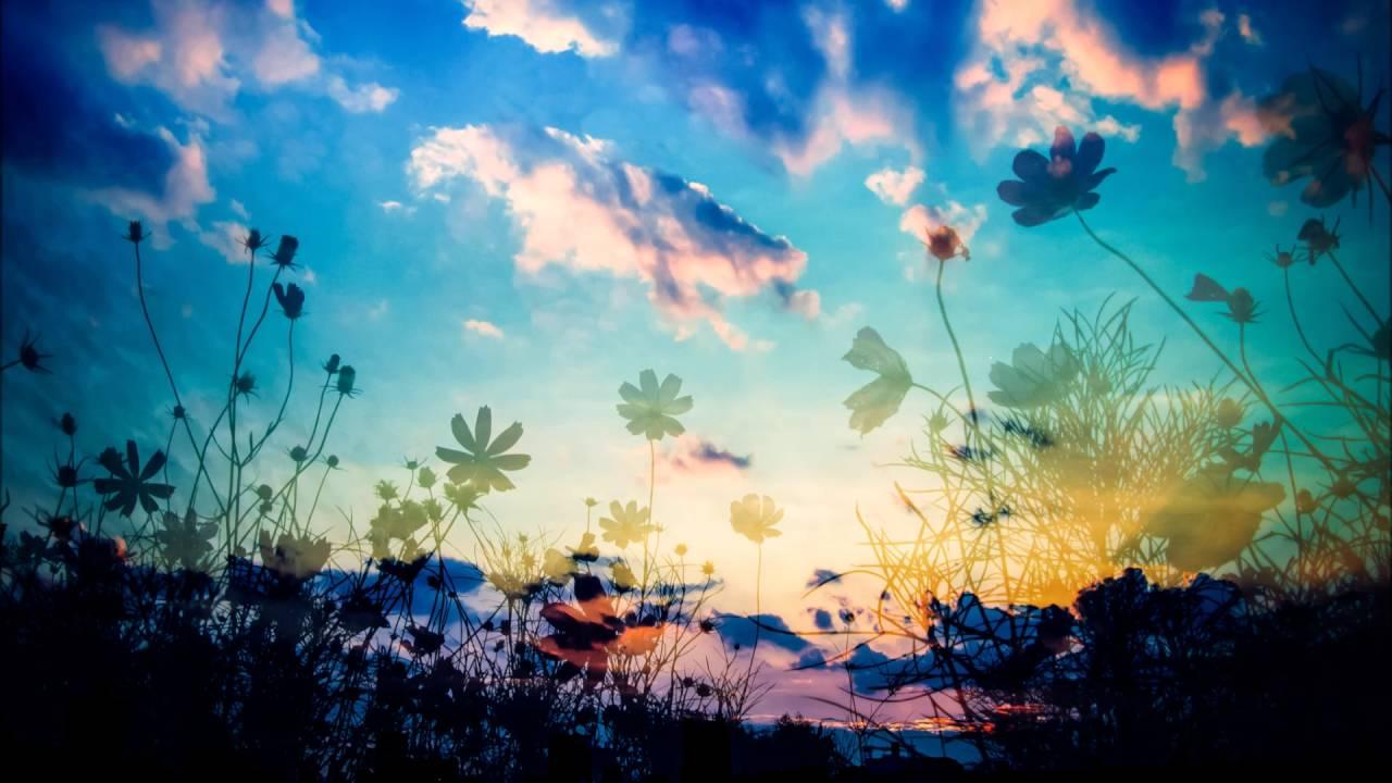 フリーBGM無料音楽素材 【癒し 睡眠 リラックス 懐かしい】「F.ver under a nitght sky」 - YouTube