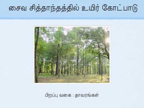 Tamil Soul theory,  உயிர் கோட்பாடு