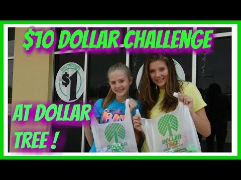$10 DOLLAR TREE CHALLENGE || Taylor & Vanessa