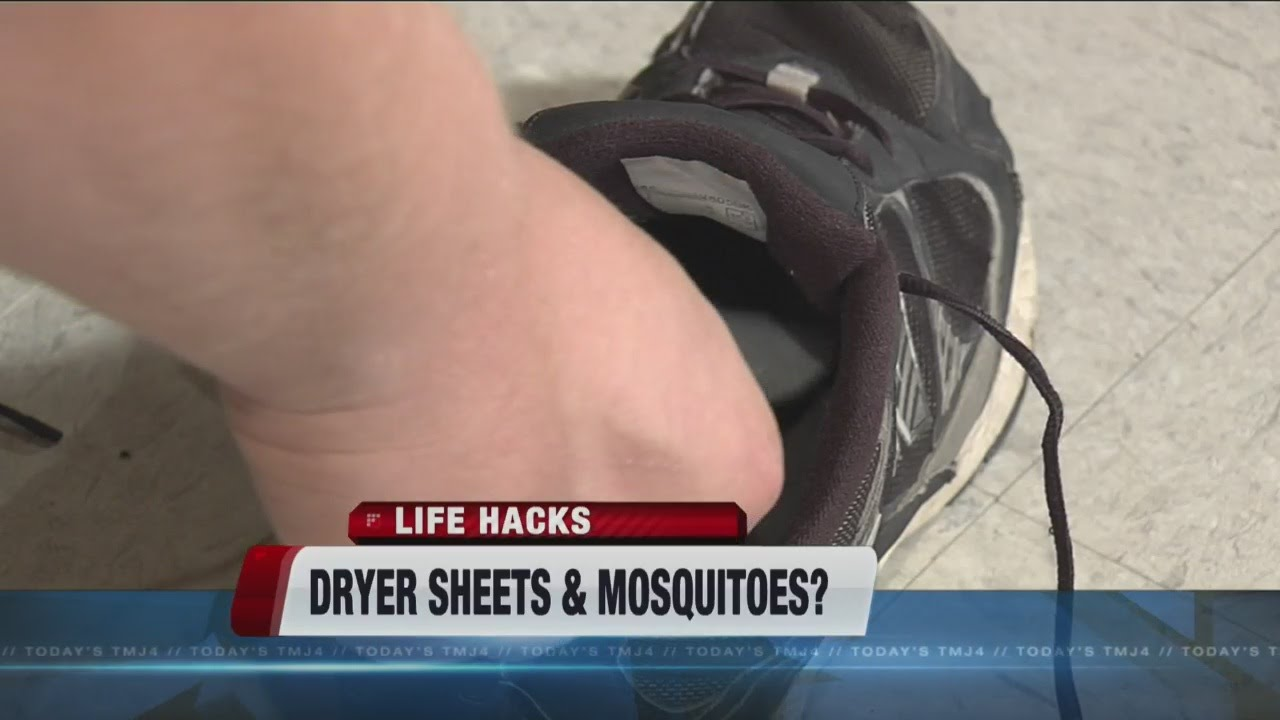 Dryer Sheets As Bug Repellent