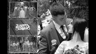 Весільний кліп Дзвиняч Заліщики Городок Ромашка