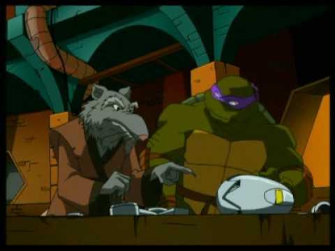 le rat tortue ninja
