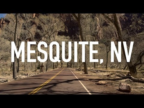 My Trip Down To Mesquite, NV
