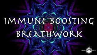BOOST YOUR IMMUNITY ~ Immune Boosting Breathwork Flow ~