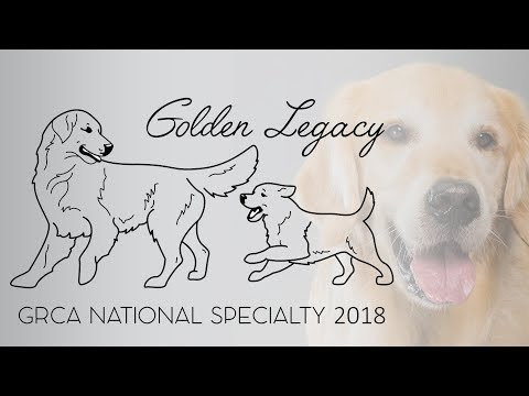2018 GRCA National Specialty - Best of Breed Saturday
