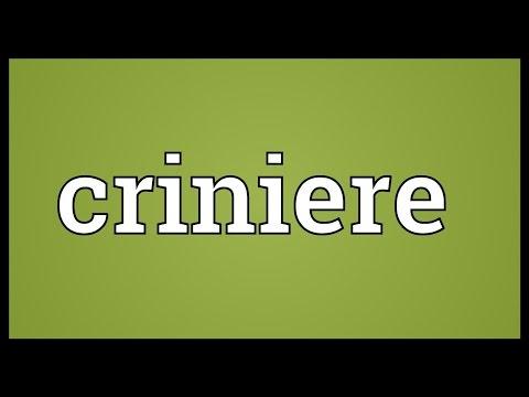 Header of criniere