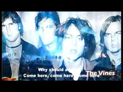The Vines Get Free lyrics