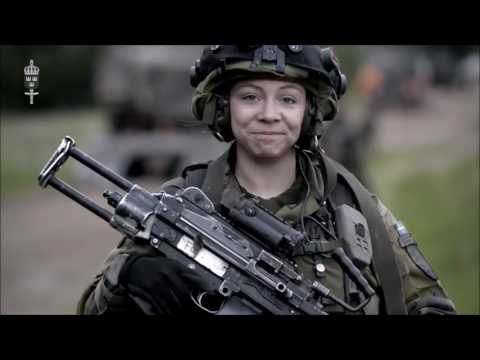 Swedish Armed Forces 2016