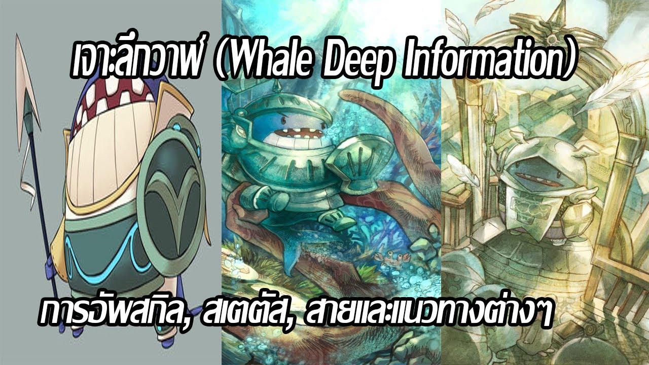 12TailsOnline : เจาะลึก วาฬ (Whale Deep Introduce) I แนะนำสกิล สเตตัส สายต่างๆ