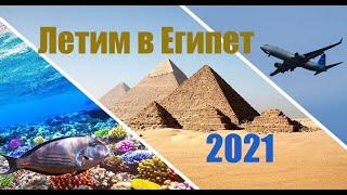 Летим в Египет 2021 Семь ночей в Faraana reef 4 как одно мгновенье