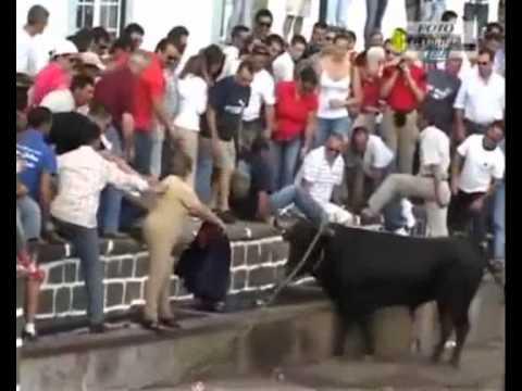 Funny or Sad-Revenge of the matador.flv