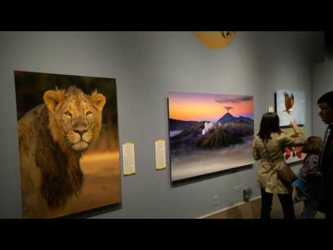 Nature's Best Photography Exhibition 2016 @ Smithsonian Museum of Natural History, Washington, D.C.