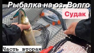 Отличная рыбалка на оз Волго Нашли судака Подробный рассказ И трофей Судак на 3 5 кг