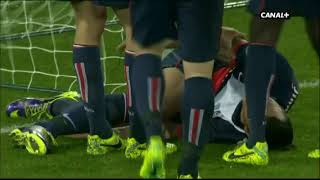 Paris SG - OGC Nice (2013-2014)