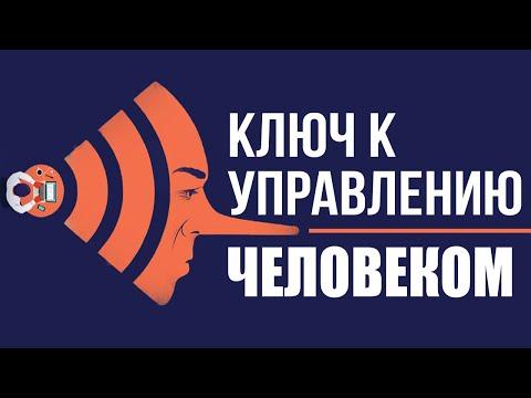 Дмитирий Перетолчин, Игорь Стечкин. ONYQ: Аудиокодирование и мировое управление