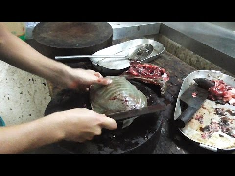 EXTREMELY GRAPHIC: SOFTSHELL TURTLE Cooked Two Ways 龟 / カメ / 터틀 - Vietnam Street Food