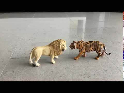 Lion and Tiger Ultimate Slap Part 3 thumbnail