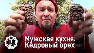 Мужская кухня. Кедровый орех | Т24