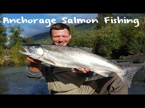 Anchorage Silver Salmon Fishing