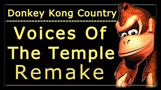 Donkey Kong Country Voices Of The Temple Remake