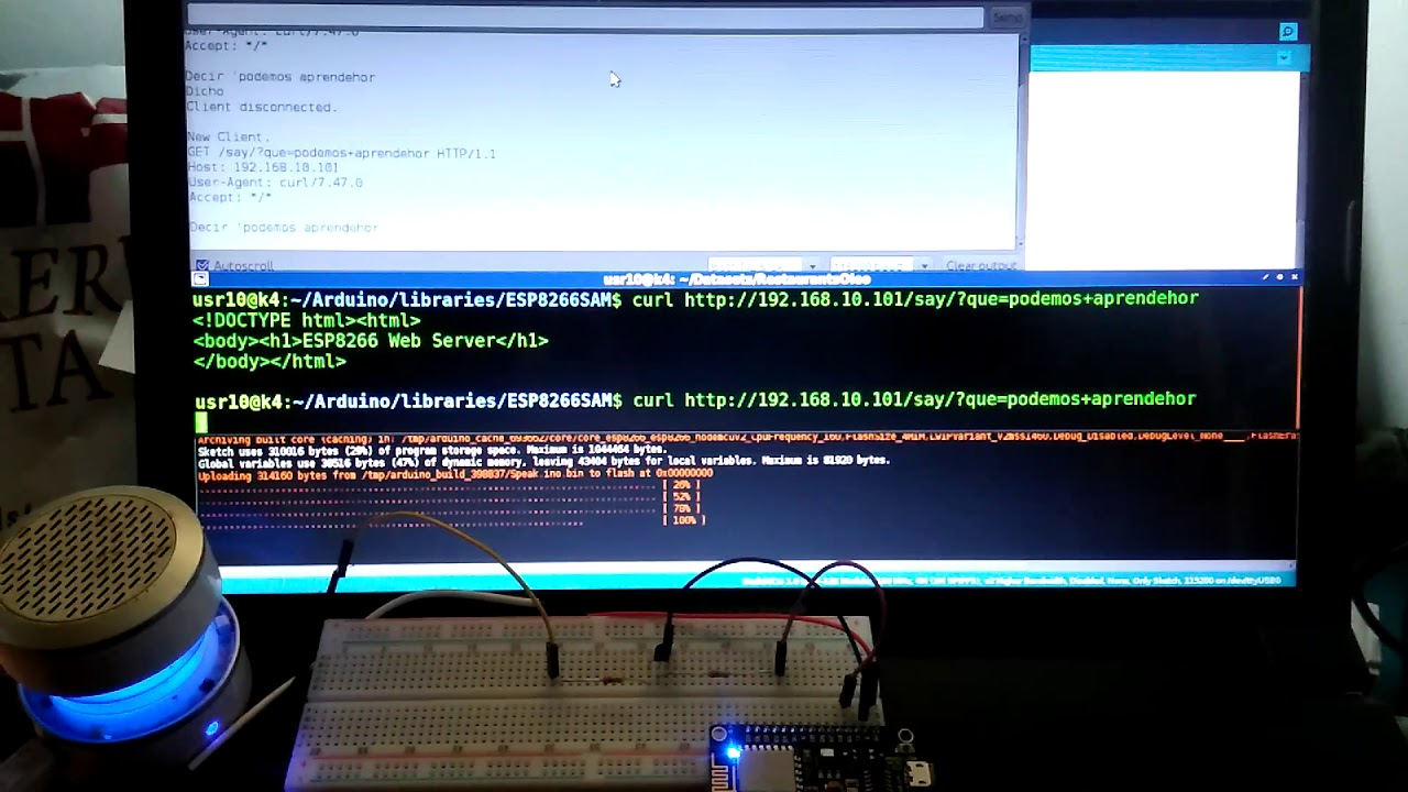 ESP8266 SAM Text To Speech NoDAC
