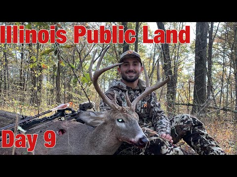 Illinois Public Land Bow Hunting Day 9- BUCK DOWN!!!!!