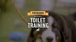 Petbarn presents: Toilet training your puppy