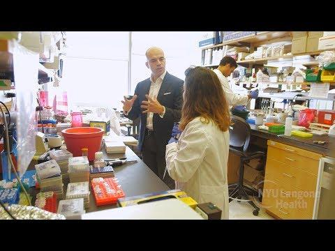 Vitamin C May Encourage Blood Cancer Stem Cells to Die