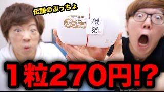 【超激レア】1粒270円の伝説のぷっちょをヒカキン&セイキンで食べてみた!【獺祭ぷっちょ】
