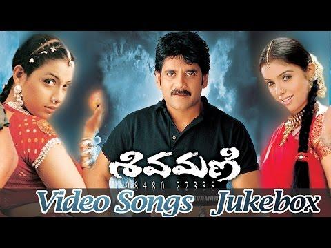 Shivamani Telugu Movie Video Songs Jukebox || Nagarjuna Akkineni, Asin, Rakshitha