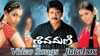 Shivamani Telugu Movie Full Video Songs Jukebox || Nagarjuna Akkineni, Asin, Rakshitha