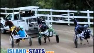 Harness Pony Racing