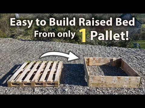 how-to-build-a-raised-bed-from-1-pallet!-(free-and-easy)